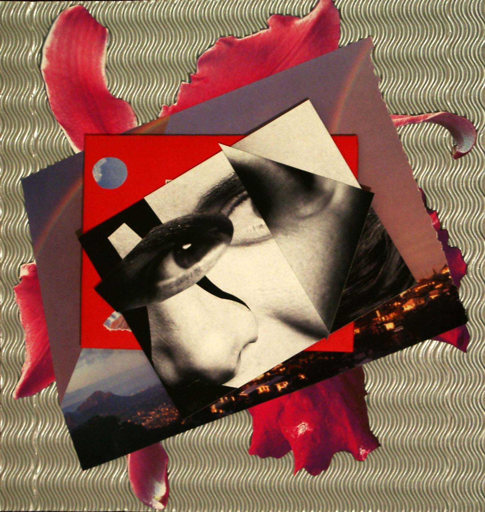 Collage-Process-2005-09